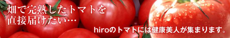 畑で完熟したトマトを直接届けたい